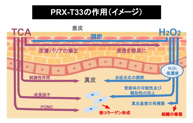 PRX-T33の作用